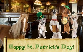 St. Patrick's Day Fun pet ecard