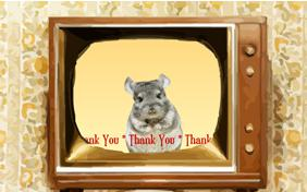 Thank You Four Ways pet ecard