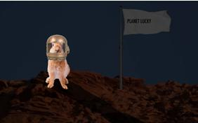 You're Out Of This World pet ecard