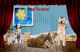 Matzo Love Passover pet ecard
