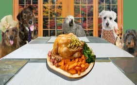 Family Thanksgiving pet ecard