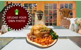 Family Thanksgiving photo upload pet ecard