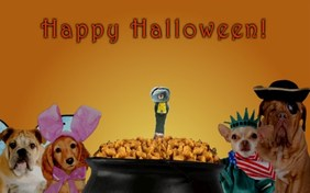 Halloween Treats pet ecard