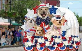 Independence Day Parade ecard with dogs