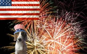 Fourth of July ecard with dogs