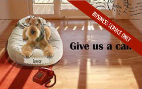 Give us a call e-postcard for pet businesses