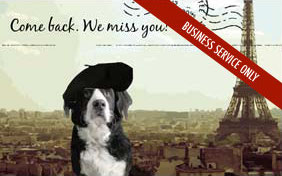 Come Back. We Miss You postcard for pet businesses