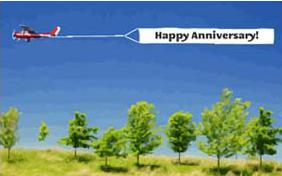 Happy Anniversary Wishes cat ecard