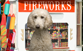 Happy New Year Four Ways photo upload ecard with dogs