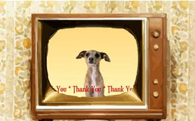 Thank You Four Ways ecard with dogs