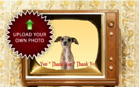 Thank You Four Ways photo upload dog ecard