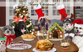 18 Best Homemade Dogs Christmas Dinner Ideas for This Holiday |Christmas Vacation Dog Dinner