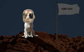 You're Out Of This World: New Year ecard with dogs