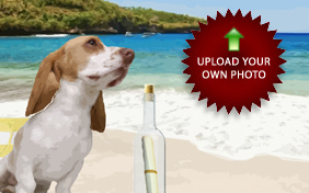 A Special Message photo upload dog ecard