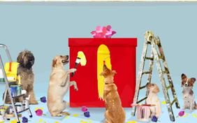 Anniversary Surprise dog ecard