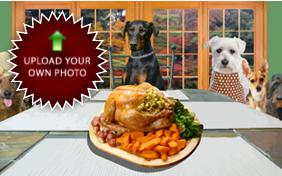 Family Thanksgiving photo upload ecard with dogs