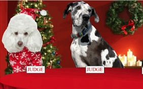 Christmas Fun ecard with dogs