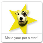 Make your dog an ecard star