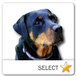 Rottweiler for dog ecards