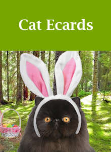 Click here to view our cat Easter ecards
