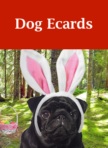 Click here to view our dog Easter ecards