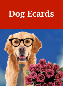 Click here to view our dog Valentine's Day ecards