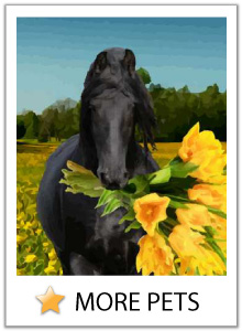 Click here to view our pet Mother's Day ecards