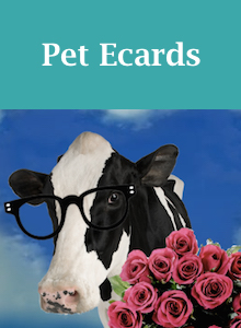 Click here to view our pet Valentine's Day ecards